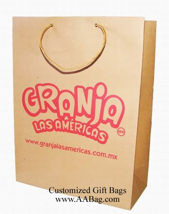 Kraft Paper Gift Bags with Twist Paper Handle